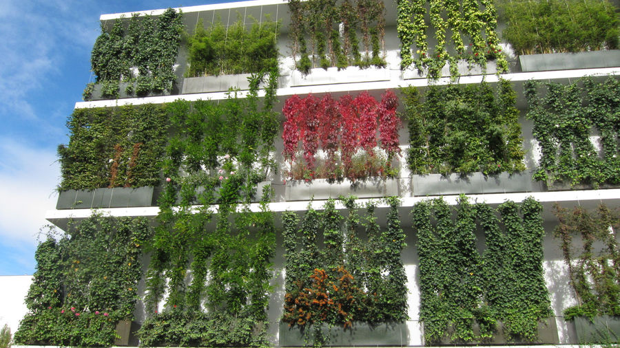 Major Sustainability Studies